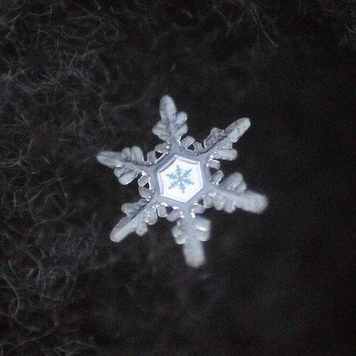 Artistic Snowflake Shapes 10