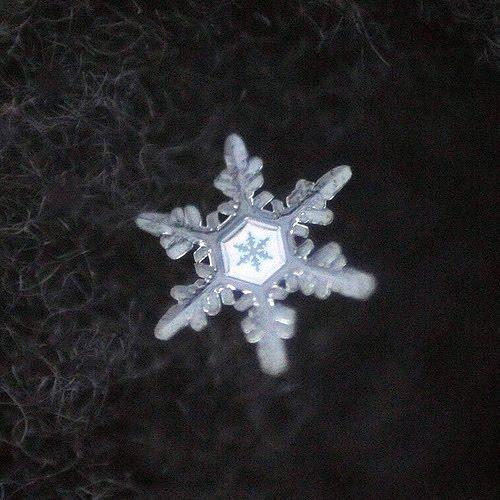 Artistic Snowflake Shapes 10
