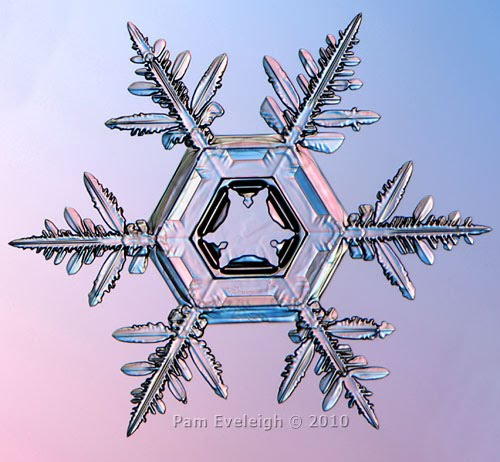 Artistic Snowflake Shapes 5