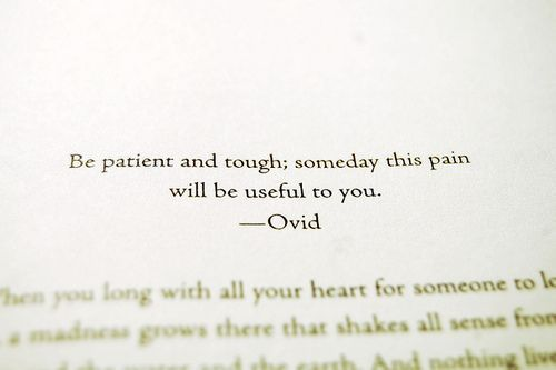 Be Patient And Tough - Someday This Pain Will Be Useful To You - Ovid