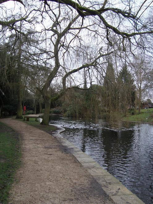 Harborne Park