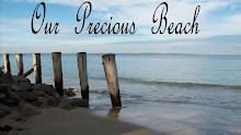 Our Precious Beach