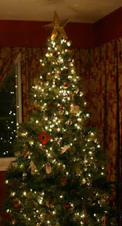 Christmas Trees 2009