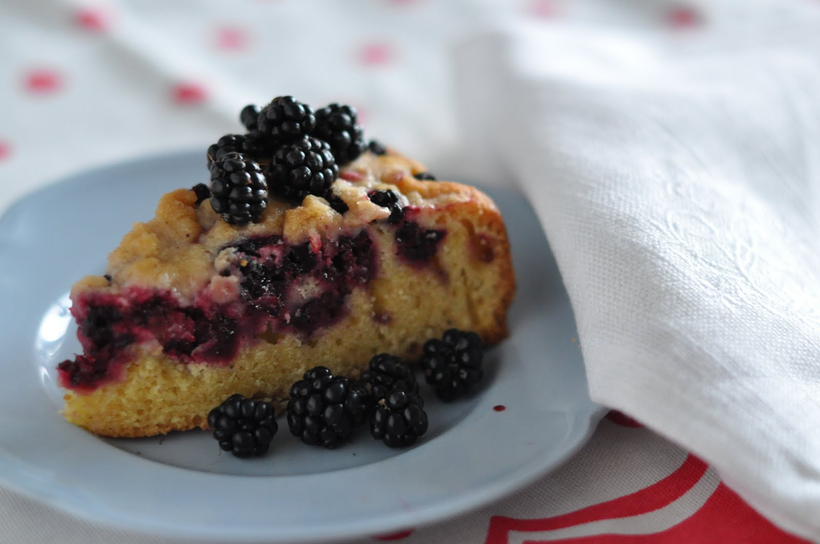 Pin Blackberry Crumb Cake Pies And Plots Cake on Pinterest