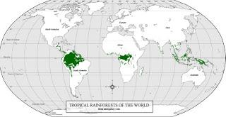 hutan-dunia