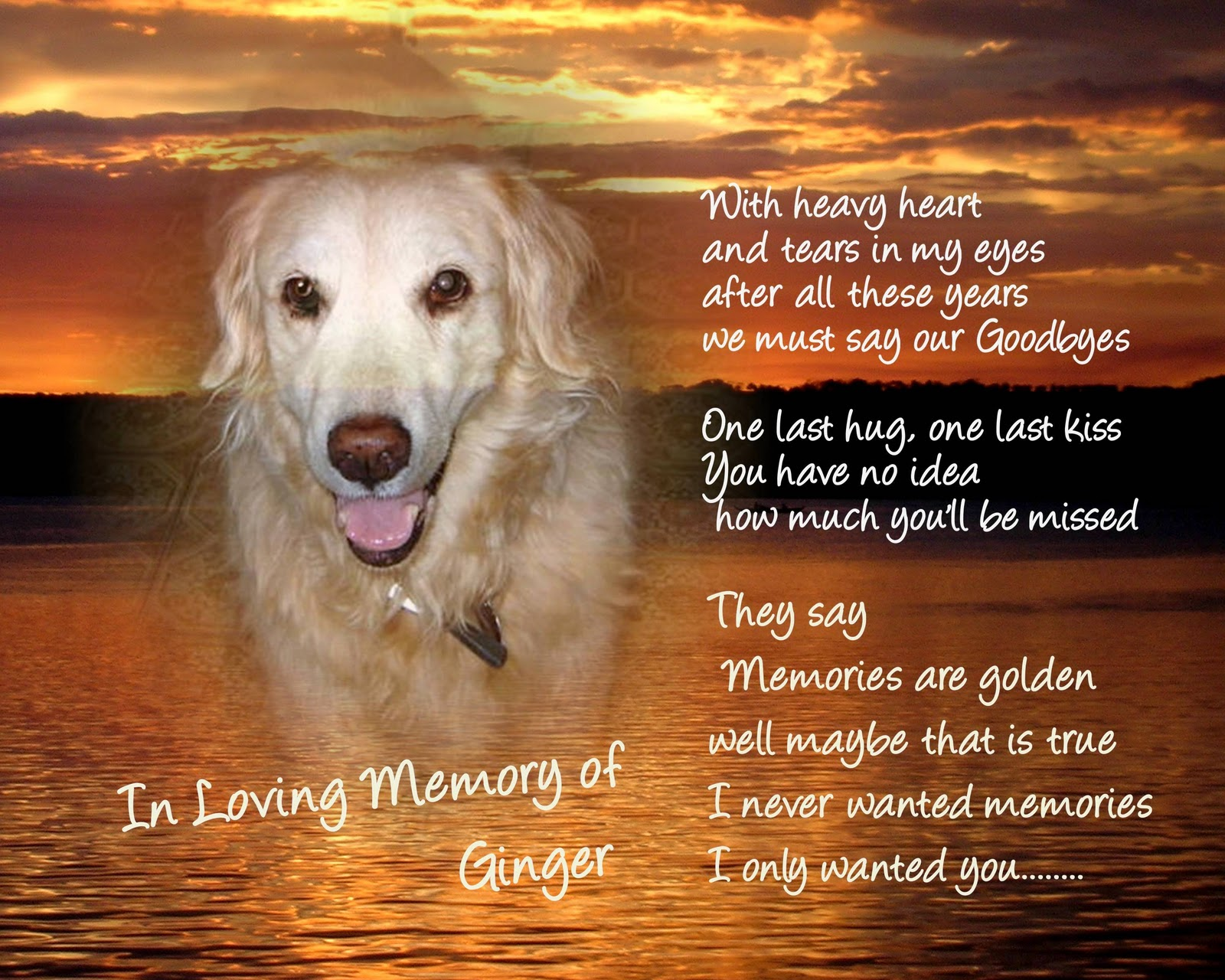 In Loving Memory Sayings And Quotes The Laughing Pet December 2010