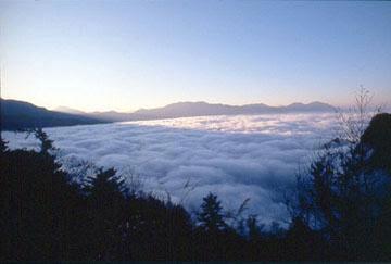 Mt Alishan Chinese Chiayi
