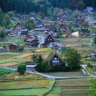 gifu village