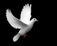 Στον ουρανό ένας άγγελος,είναι ένα συνηθισμένο άτομο.