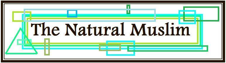 TheNaturalMuslim