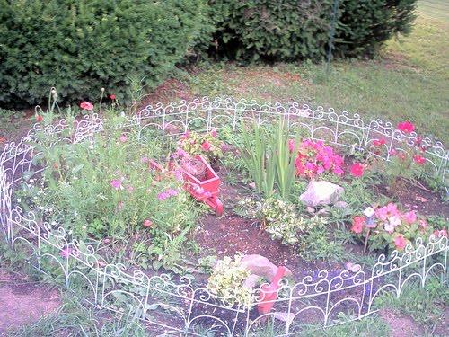 grow a small flower garden