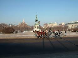 Viyana Fotoğrafları