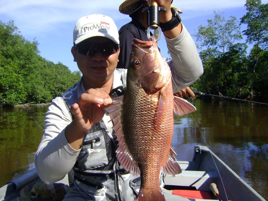 RedBass Bongawan