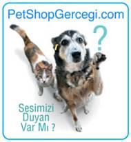 PET SHOP GERÇEĞİ