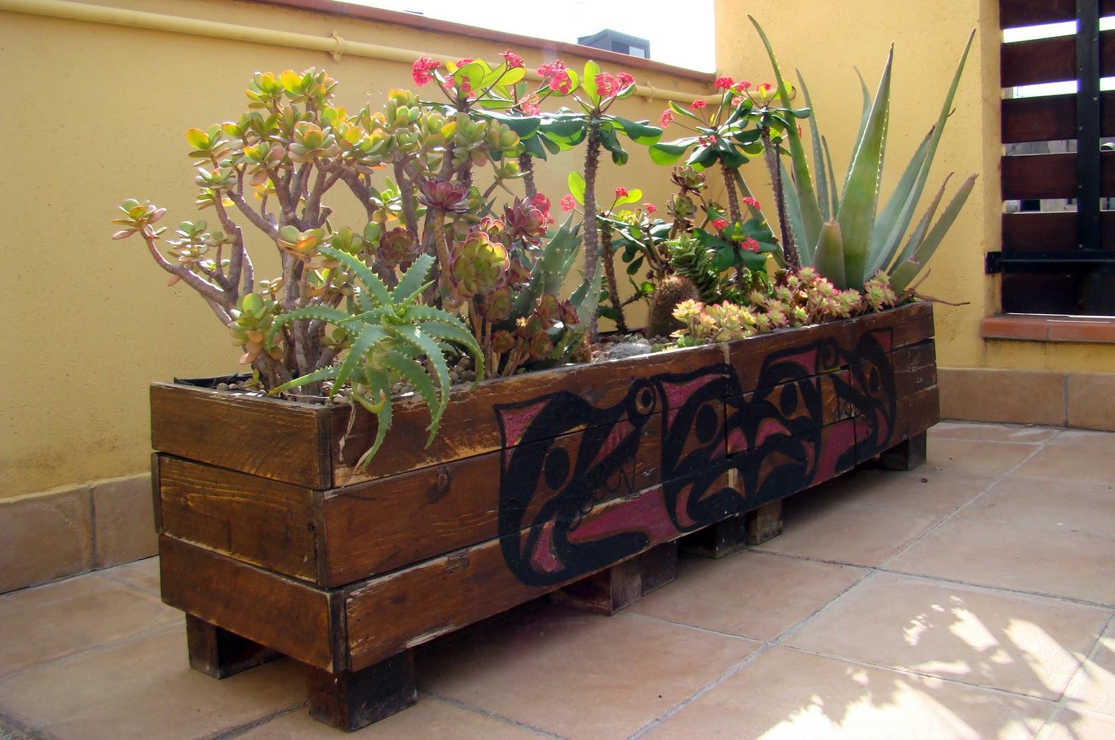 Por si te ayuda crea tu peque o jard n de cactus - Como disenar un jardin exterior ...