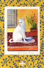 White Kitty ,oil original (c)