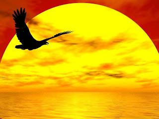 radical forgiveness, courage to forgive, forgiveness hawaii, forgiveness coach