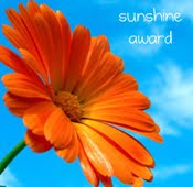 1st of 4 sunshine blog awards