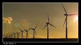 FEBRERO: LAS ENERGÍAS RENOVABLES