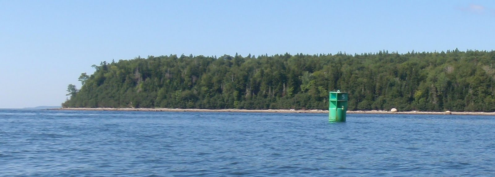 Penobscotpaddles stockton springs to sears island me bunch obirds if we land at the erratic on sears island which in line with the green can we can often find sand dollar husks but only at the lowest tides geenschuldenfo Image collections
