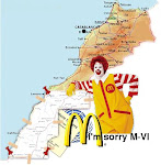 ¡If Mcdonald's gets in, you should get out! ¡Free Western Sahara!