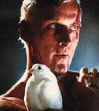 BLADE RUNNER   Roy Batty (Blade Runer, 1982)