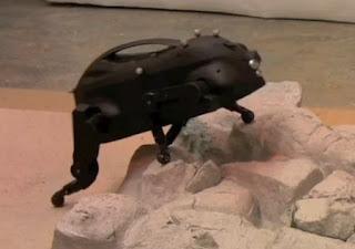 Pequeño perro robot
