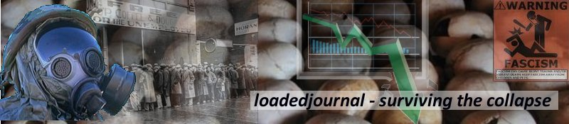 Loaded Journal - Surviving the Collapse