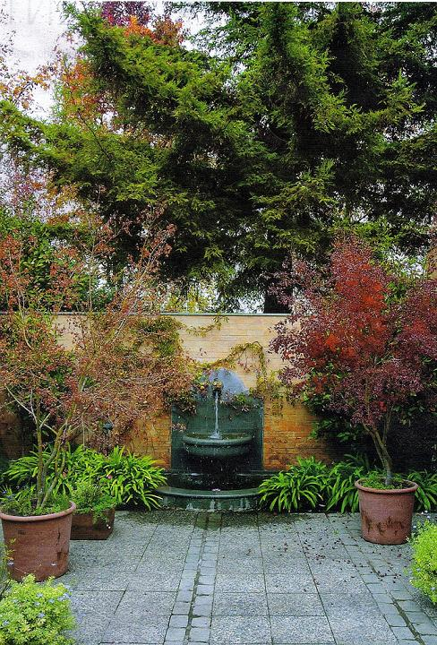 Un punto focal en nuestro jard n plantas - Punto jardin ...