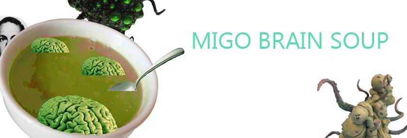 Migo Brain Soup