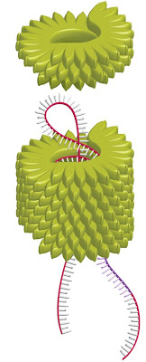 Tütün virüsünün içine siRNA konuluyor.