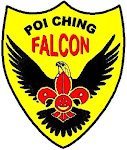 Poi Ching Falcon Cubs