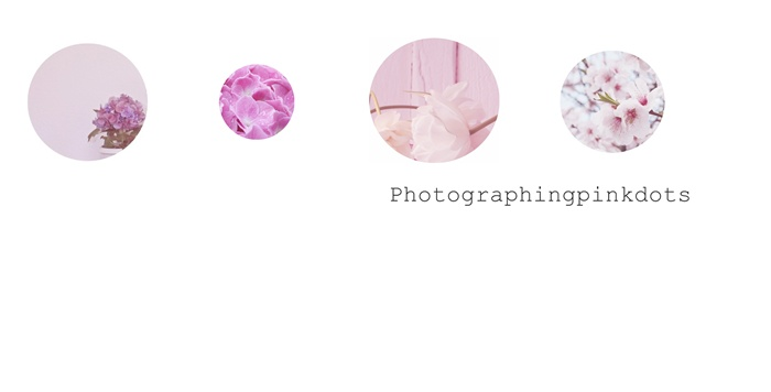 Photographingpinkdots