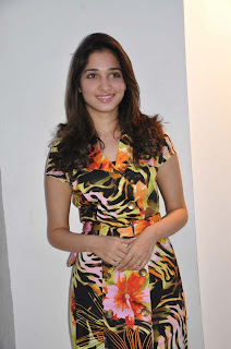 South Indian Hot actress Tamannah gallery