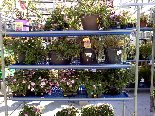 Lowes Garden Center Plants. Beautiful Garden Center Jobs At Lowes 12 Became  Inspiration Article Plants