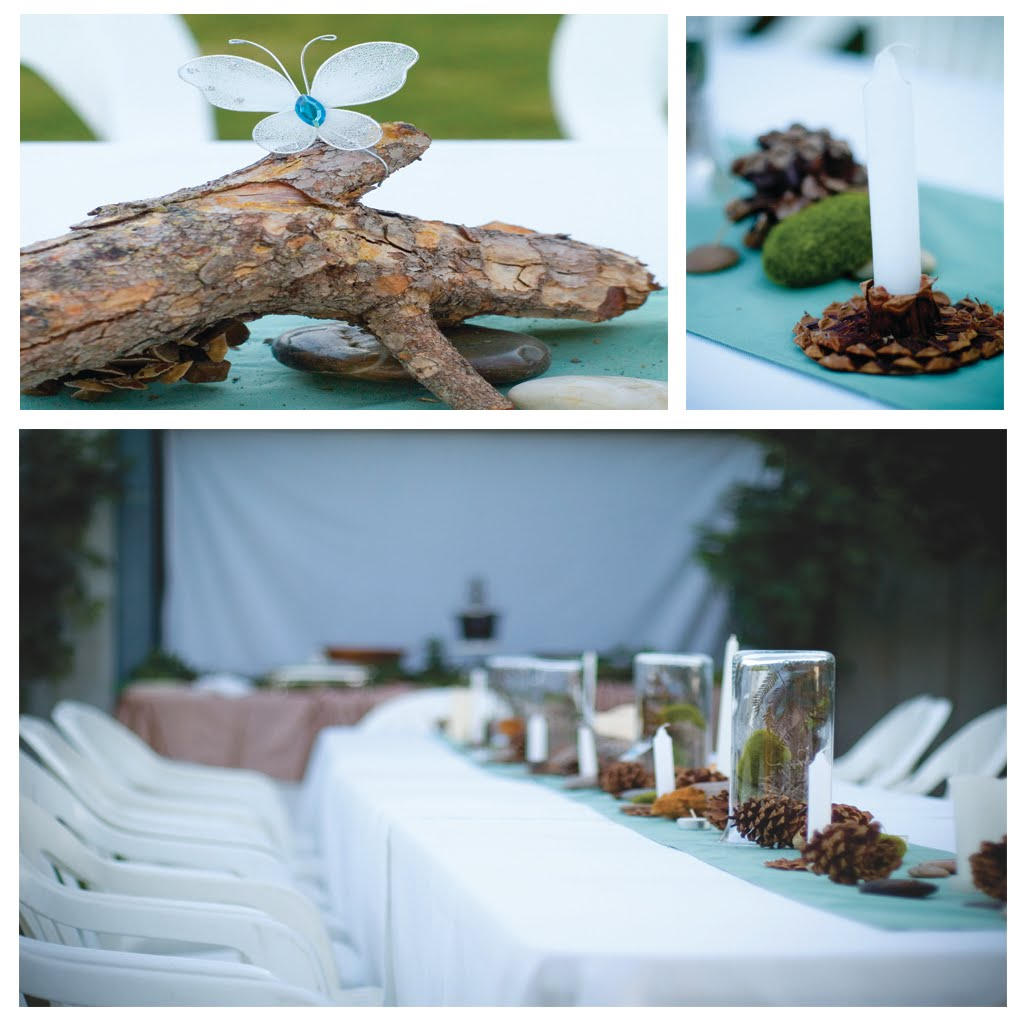 phoenix event planning enchanted forest baby shower