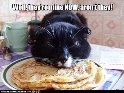Cat Only Eats Lickelix