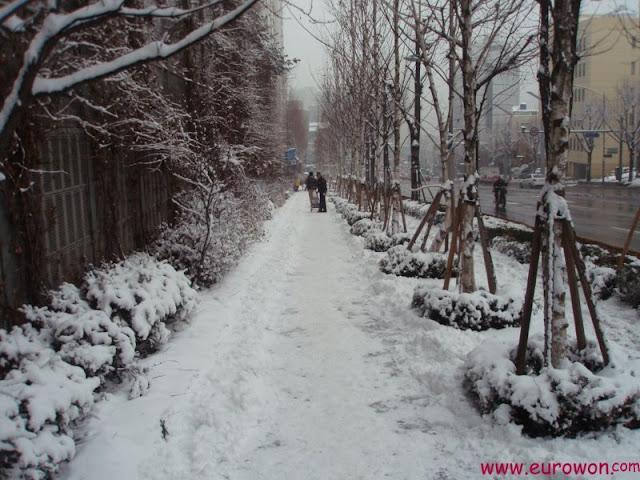 Calle de Seúl cubierta de nieve