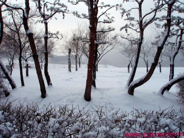 Nieve en una montaña de Seúl