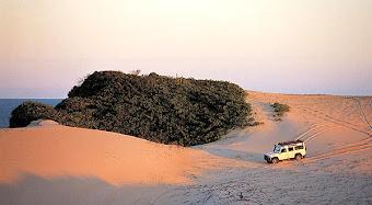 Praia Mole - SC