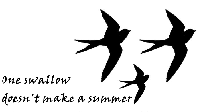 One swallow doesn't make a summer.