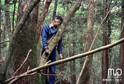 Khu rừng tự sát nổi tiếng nhất Nhật Bản