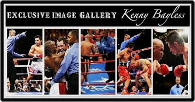 Kenny Bayless Fights