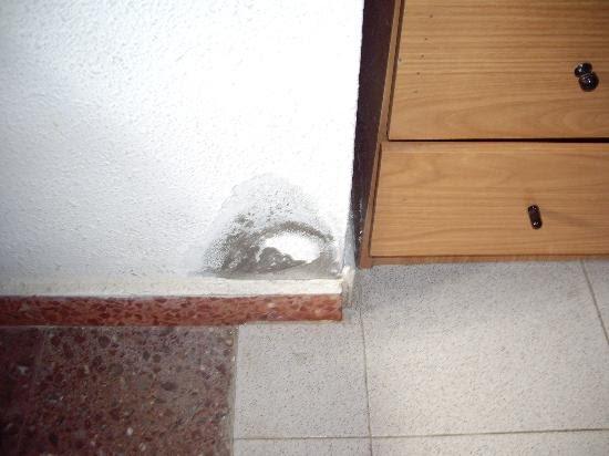 Humedades en casa tratamiento del moho por humedad - Moho en las paredes ...