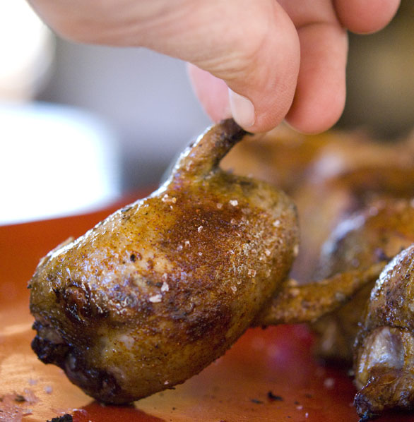 Grilled dove recipes