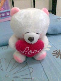 darius's bear