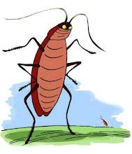 Proximamente: Las aventuras de Alta Cucaracha