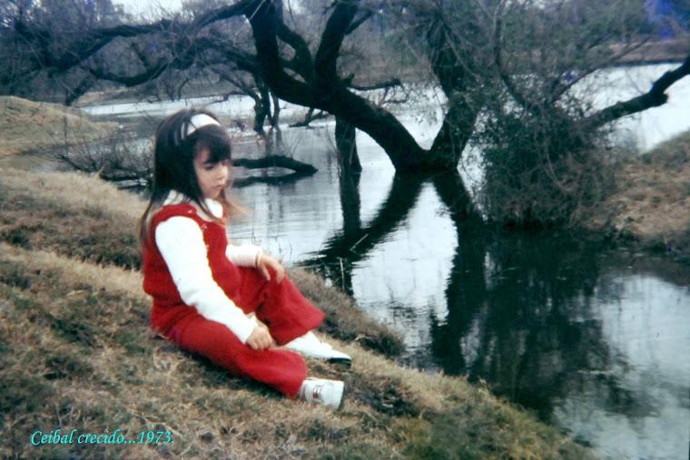 1973... y el ¨Ceibal¨ crecido.