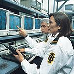 Las mujeres en la vigilancia