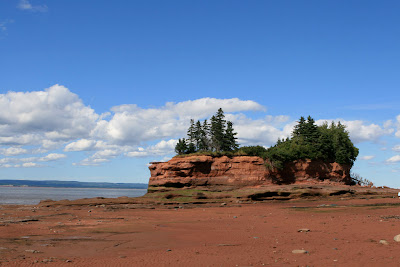 Bay of Fundy cliff